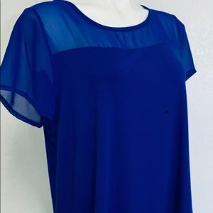 Vince Camuto sheer top L Royal Blue